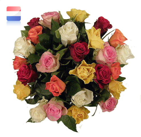 Boeket Colorfull Roses